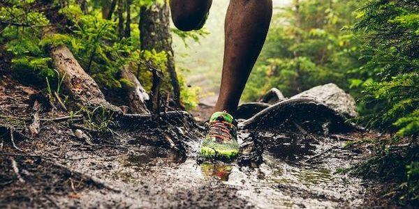 Quelles séances cardio pour préparer un trail ?