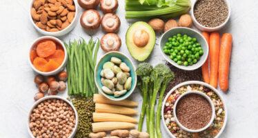 Le macrocosme des régimes végétariens !